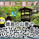 真・恐怖体験「奥祖谷(おくいや)二重かずら橋・野猿」で3つのスリル