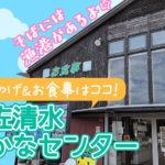 土佐清水さかなセンター(足摺黒潮市場)は新鮮な魚料理&高知土産がいっぱい!