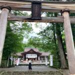 礫石、輪抜け祓所に厳島神社!?「土佐神社」の見どころをご紹介