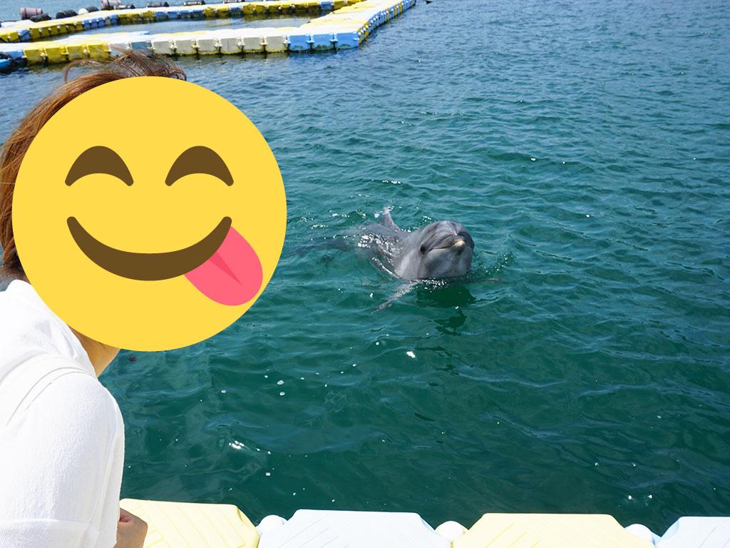 イルカとツーショット