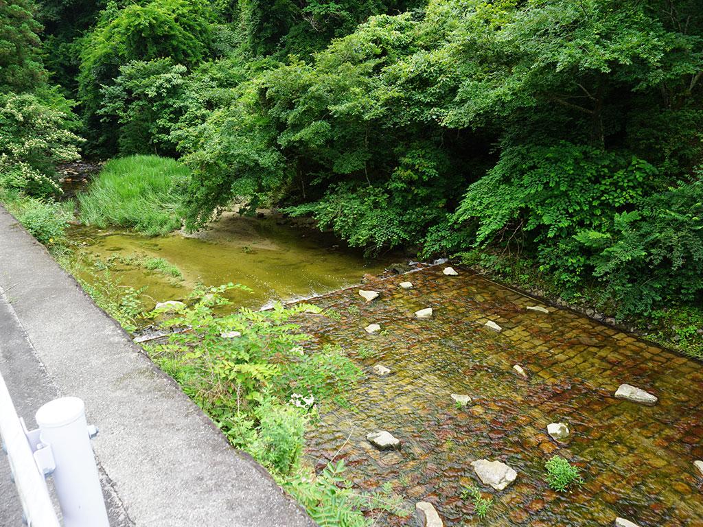公園下に流れる川