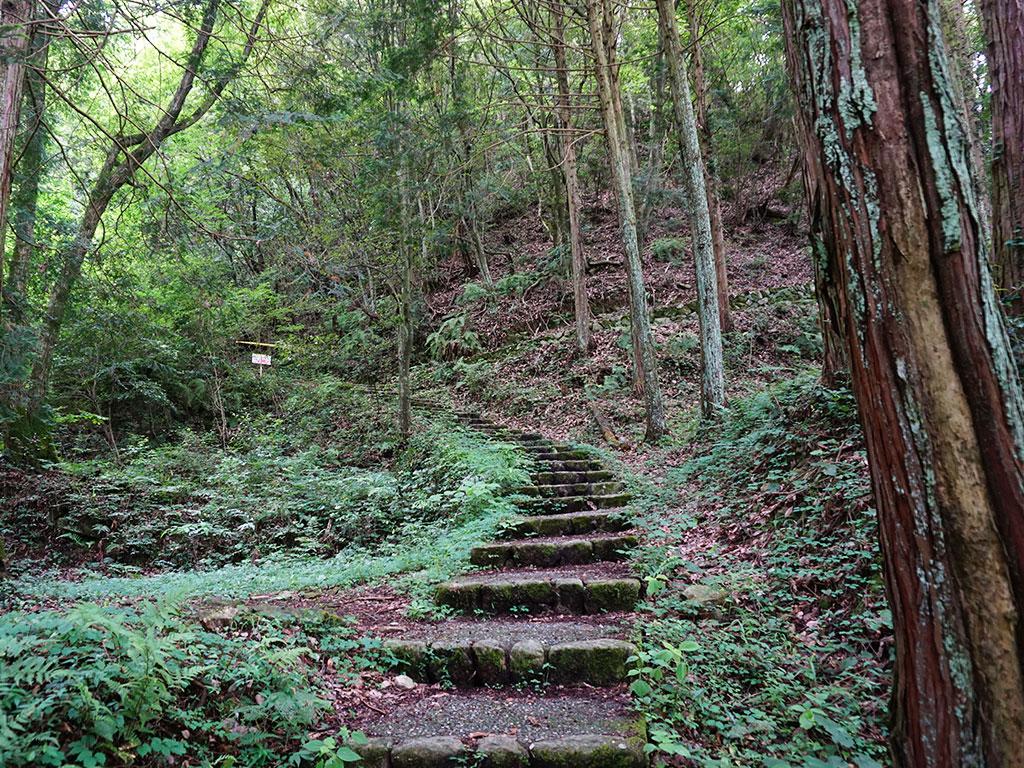 上へ登る階段