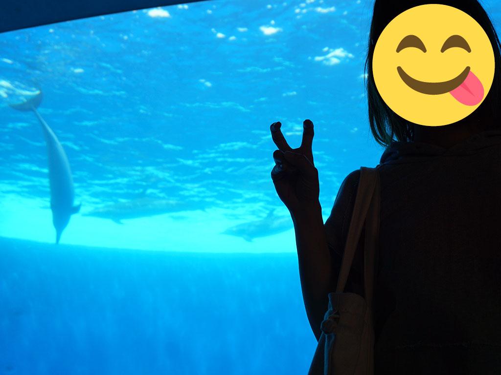 イルカと一緒に写真