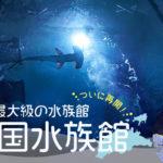 ついに再開!香川県宇多津町に新しくできた「四国水族館」へ行ってきた