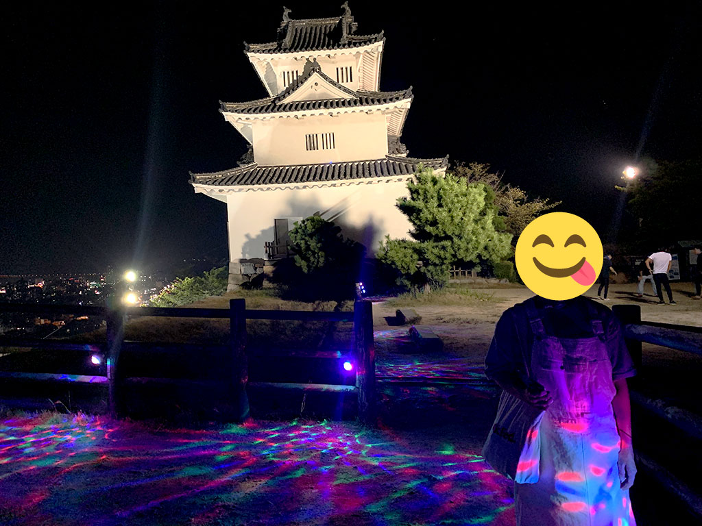 丸亀城天守とライトアップ